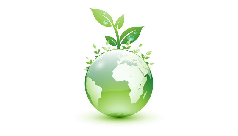 Dream's Hotel is committed to the environment. Certify as a green hotel.